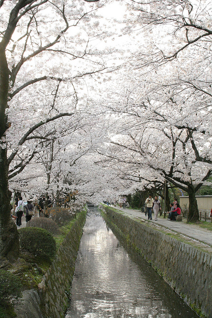 Tetsugaku no michi, il sentiero della filosofia