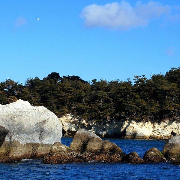 Matsushima (foto di Patrick Colgan, 2014)