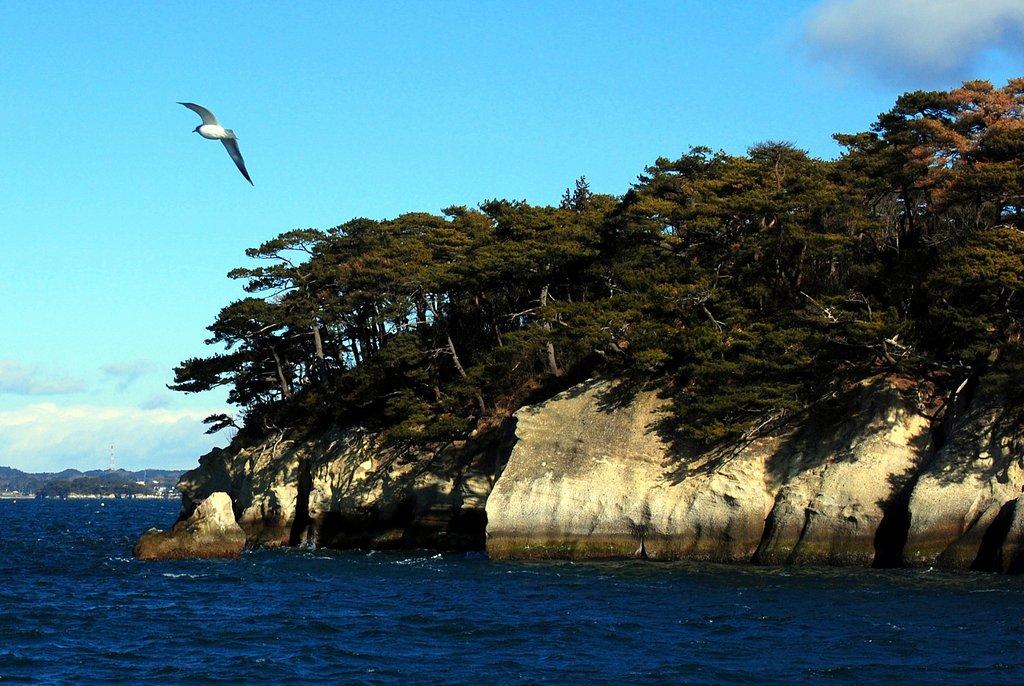 Le isole di Matsushima