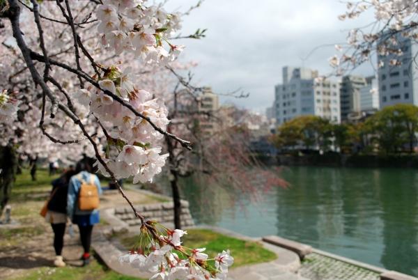 Orizzonte Giappone di Patrick Colgan
