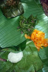 Papaya, vegetables, meat and sticky rice