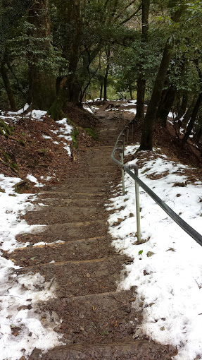 Steps leading up to mount Kurama