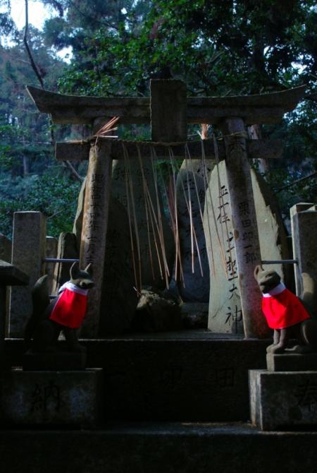 Fushimi Inari Taisha, Kyoto (foto di Patrick Colgan, 2014)