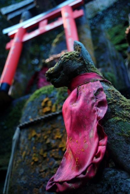 Visitare il Fushimi Inari Taisha di Kyoto è un'esperienza indimenticabile (foto di Patrick Colgan, 2014)