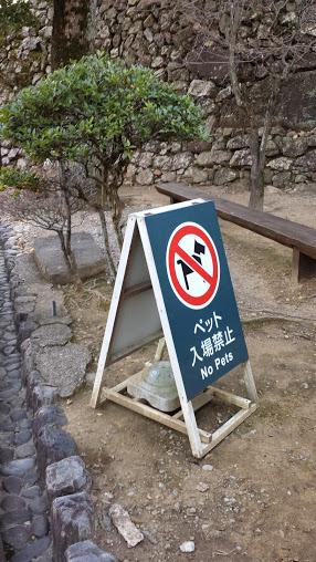 Curiosamente, al castello di Inuyama, che significa 'monte del cane' non sono amessi i cani (foto di Patrick Colgan, 2015)