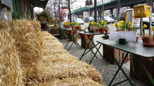 Il Blumen cafè (foto di Patrick Colgan, 2015)